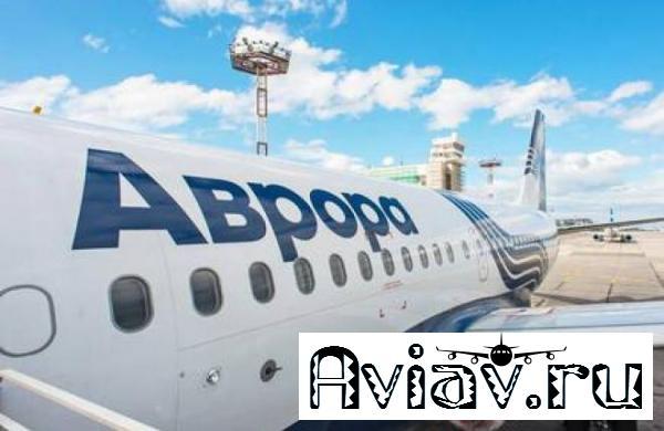 Авиакомпания «Аврора» отчиталась за первый год работы